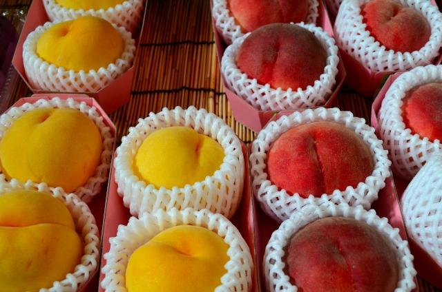 白桃 黄桃 違い