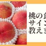 桃 食べ頃