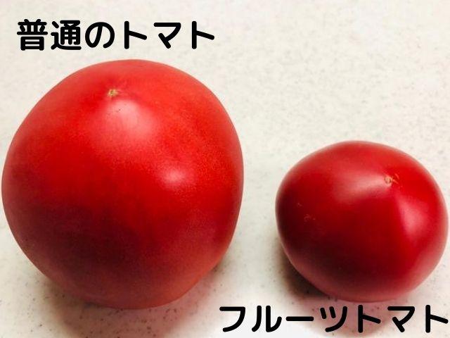 フルーツトマト トマト